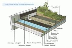 An environmentally friendly rooftop is a roof top that is described crops, which actually lowers stormwater run-off and lowers cooling charges. Roof Architecture, Sustainable Architecture, Architecture Details, Dormer House, Green Facade, Living Roofs, Construction Drawings, Hospital Design, Roof Detail