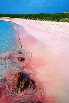 7 Amazing Pink Beaches in The World! Santa Cruz Island – Philippines