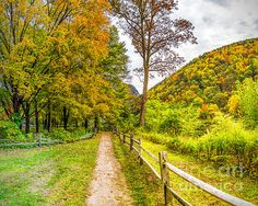 Autumn colors along the path at the Delaware Water Gap National Recreation Area in New Jersey