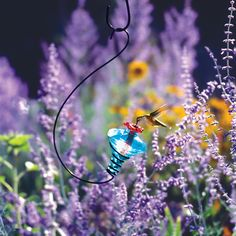 Blown Glass Hummingbird Feeder   Gardener's Supply