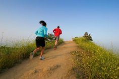 Forget doing your cardio on a Stairmaster or treadmill. If you want to get into shape fast, burn fat, and build muscle hill sprints are the way to go. Read how to safely get started.