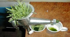 Wheatgrass Smoothie At Home. Wanting To Get More From Your Juicer? Take A Look At These Guidelines! Best Fruit Juice, Fruit Juice Recipes, Fruit Drinks, Fruit Smoothies, Smoothie Recipes, Diet Recipes, Smoothie Packs, Juicing Benefits, The Chew