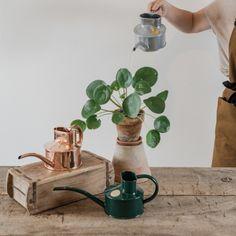 1886 óta ebben a formában gyártják ezt a százéves, hagyományos formájú, kézzel készített kiskannát. Három féle változatban kapható: zöldre fújt fém, horganyzott acél és vörösréz.