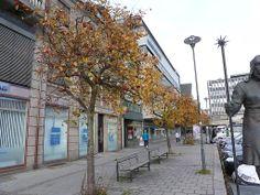 Høststemning på Torget i Fredrikstad