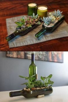 Succulent Wine Bottles