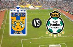 Ver Tigres vs Santos EN VIVO Liga MX Clausura 2018 Online