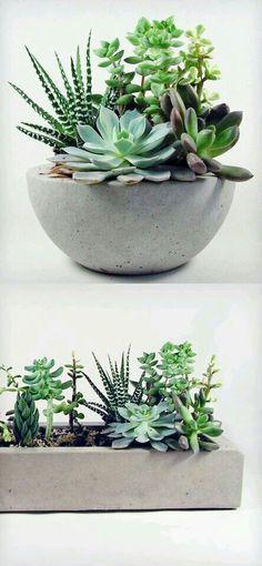DIY planter                                                       …                                                                                                                                                                                 Más
