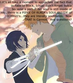 """Let's take a moment to appreciate that in Fade to Black, Ichigo didn't forget Rukia because a part of her soul is still inside of his...There is a piece of Rukia's soul inside of Ichigo's.  They are literally soulmates, now THAT is cannon.  Any questions?"""