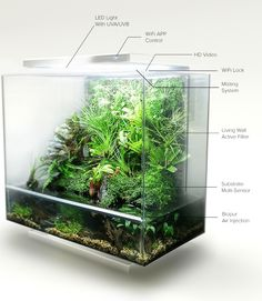 biopod aqua allows you to create your own personal eco system and monitor it via wifi and online.