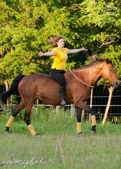 Fiatal Szabadidomítók Közössége   Zsuzsi Riding Helmets, Horses, Hats, Animals, Animales, Hat, Animaux, Horse, Animal