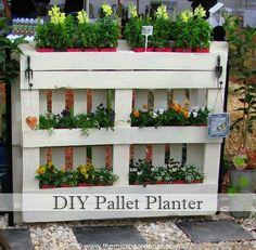 DIY pallet plater