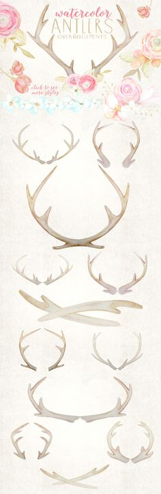 Rustic Watercolor Antlers & Flowers on Creative Market