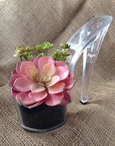 Stiletto Shoe Planter by LittleBalloon on Etsy https://www.etsy.com/listing/264736899/stiletto-shoe-planter
