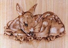 Wildlife - #Danette Smith- #Dangee's Pyrography -#Wood Burning