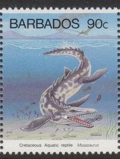 Barbados 1993, Mosasaurus