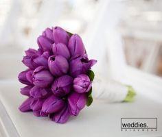 All purple wedding bouquet, the tulips are adorable Vero Tulip Wedding, Purple Wedding Bouquets, Bridesmaid Bouquet, Wedding Flowers, Dream Wedding, Bouquet Wedding, Purple Tumblr, Smart Tv Samsung, Tulip Bouquet