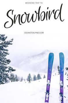 What to expect when Skiing Snowbird, Utah! From expected snowfall to where to rent equipment and receive ski lessons! Additionally, find out where to stay and where to eat! Canada Travel, Travel Usa, Travel Tips, Travel Ideas, Globe Travel, Travel Europe, Travel Advice, Snowbird Utah, Weekend France