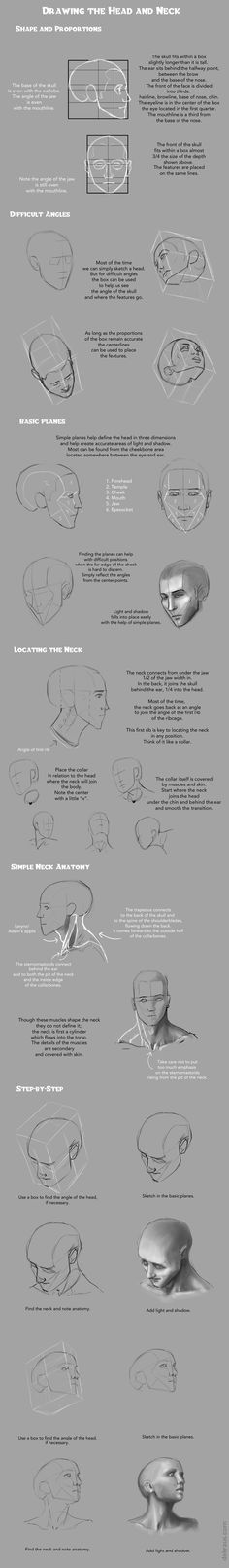 Drawing Heads and Necks Tutorial by banjodi on DeviantArt