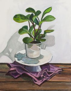 Baby Rubber Plant, 2015 | Allyson Kramer | Mixed Media on Canvas | 16 x 20 inches Rubber Plant, Plant Painting, Mixed Media Canvas, Buy Prints, Plants, Baby, Ficus Elastica, Plant Drawing, New Media Art