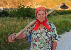 In the fields of Moldova