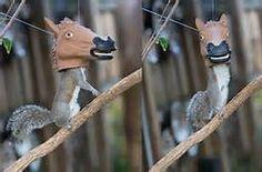 horse head squirrel feeder - Bing Images