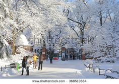 NEW YORK, NY, USA-FEB 4: front yard of the zoo in Central Park, February 3, 2014