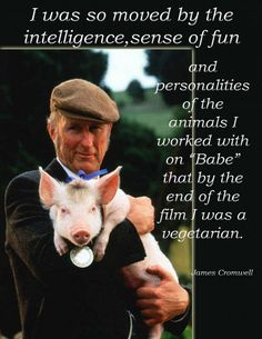 "I was so moved by the intelligence, sense of fun and personalities of the animals that I worked with on ""Babe"" that by the end of filiming, I was a vegetariam""  ...James Cromwell.     Think about it... have a heart and don't eat them... go vegan"