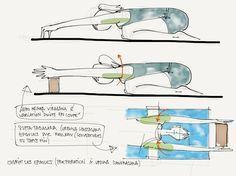 yoga: exercices de préparation pour les épaules | Iyengar Yoga TT Notes