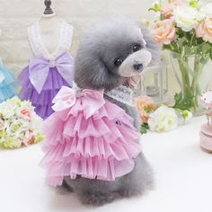 Korean Harness Style Cat Clothes Cute Pet Dog Dresses Summer Poodle Chihuahua Teddy Shirt King-S 2017 New Arrivals Pet Products