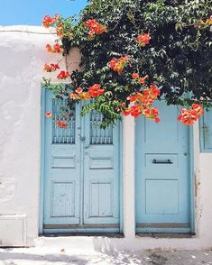Mykonos, Greece | Pastel | Blue | Flowers | Fresh ✩ @thehazelvalley
