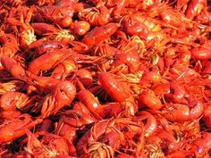 Straws and Claws has all the boiled crawfish you can imagine. #eatlafayette #lent