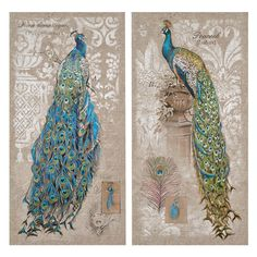 2 Piece Peacock Canvas Art Set