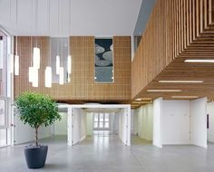 Thistle Foundation, Centre of Health & Wellbeing, Edinburgh, by 3DReid.  Timber cladding to interior walls and ceiling, with micro concrete floor finish.  Photography courtesy of Cadzow Pelosi.