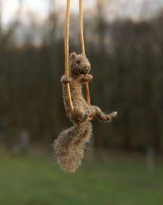"My ""spirit animal"" on a swing! ^_^"