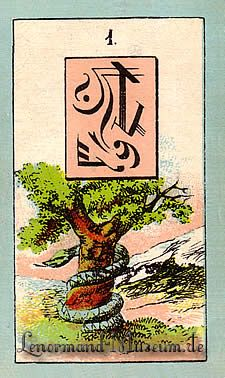 The Snake, by the Lenormand Fortune Telling Cards with mystic symbols