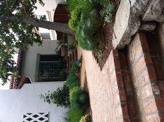 Satori Landscape Design mediterranean front yard garden