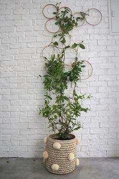 Tendência- como criar uma escultura vegetal