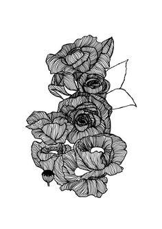 Botanical Rose Illustration Print // by StaggIllustration on Etsy
