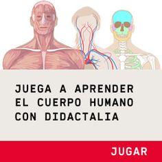 Juega a aprender el cuerpo humano con Didactalia