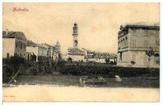 1903, Molinella