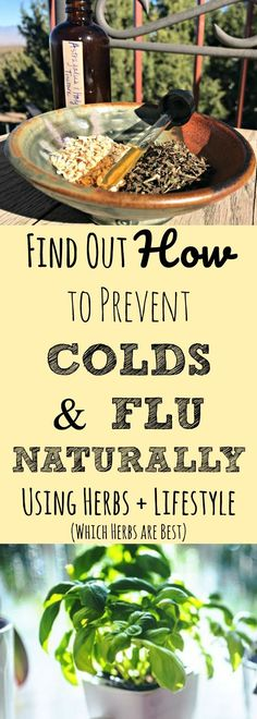 Did you know you don't have to be at the mercy of your germy world? Did you know there are things you can do every single day that will help your body fight off colds and flu? Find out which herbs to use every day and some additional natural health strategies for fighting off seasonal sicknesses like colds and flu. Prevent cold and flu naturally! Stay healthy by using herbs.