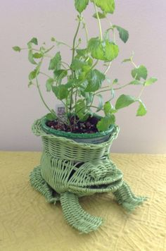 Shabby Chic Green Frog Wicker Basket Planter | @Lindsey Dominguez | Wicker Paradise Blog.