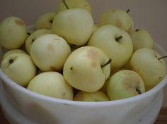 Alyviniai obuoliai (krituoliai); 1 lt./kg.