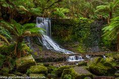 Horseshoe Falls, Mount Field National Park (Tasmania)- www.agirla4wdandatrailer.com