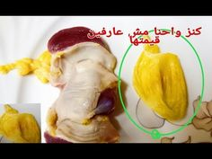 Gym Workout For Beginners, Funny Comments, Arabic Food, Beauty Skin, Health Tips, Turkey, Cooking Recipes, Healthy, Ali Quotes