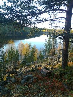 """""""We just loved the view over Lake Immeljärvi in Levi yesterday and wanted to share it with you ...""""   https://www.facebook.com/laplandsafaris"""