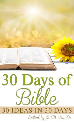 30 Days of Bible + 4 Giveaways! - In All You Do