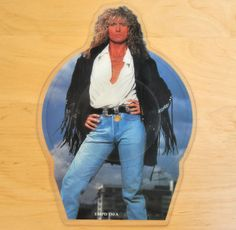 Whitesnake – Now You're Gone shaped vinyl picture disc