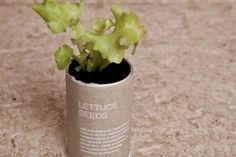 New Zealand-based designer creates the Urban Survival Pack designed to teach children about agriculture and survival.  The survival pack contains a gardening set that includes a spade, trowel, and a rake. The pack also comes with an emergency shelter and packs of seeds of garden peas, lettuce, and others. The cardboard tubes can be filled with soil to plant the seeds in.
