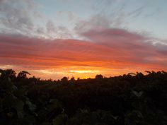 Stonehouse sunset